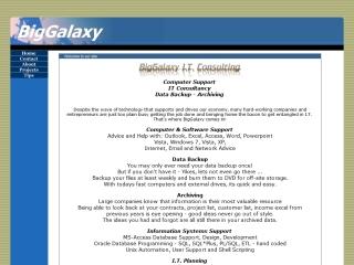 BigGalaxy IT consulting